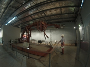 2 old dinosaurs together!