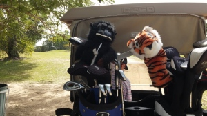 Tiger & Chimp on our new buggy